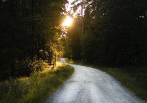 Beautiful Gravel Road